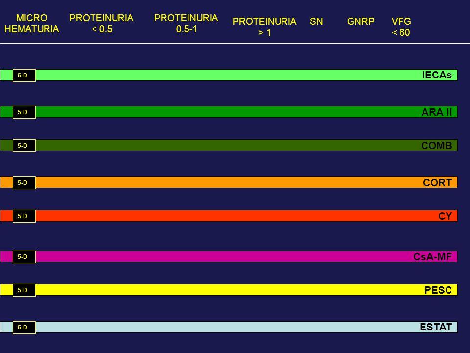 MICRO HEMATURIA PROTEINURIA < 0.5 PROTEINURIA 0.5-1 PROTEINURIA > 1 GNRPVFG < 60 SN IECAs ARA II COMB CORT CsA-MF CY PESC ESTAT 5-D