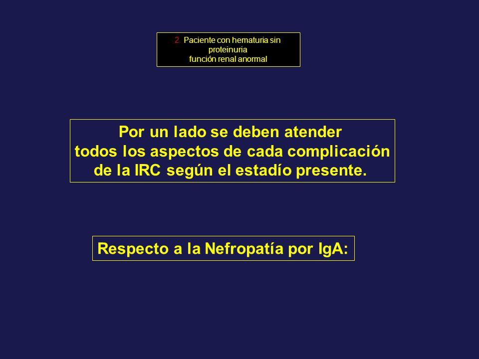 Por un lado se deben atender todos los aspectos de cada complicación de la IRC según el estadío presente. Respecto a la Nefropatía por IgA: 2. Pacient