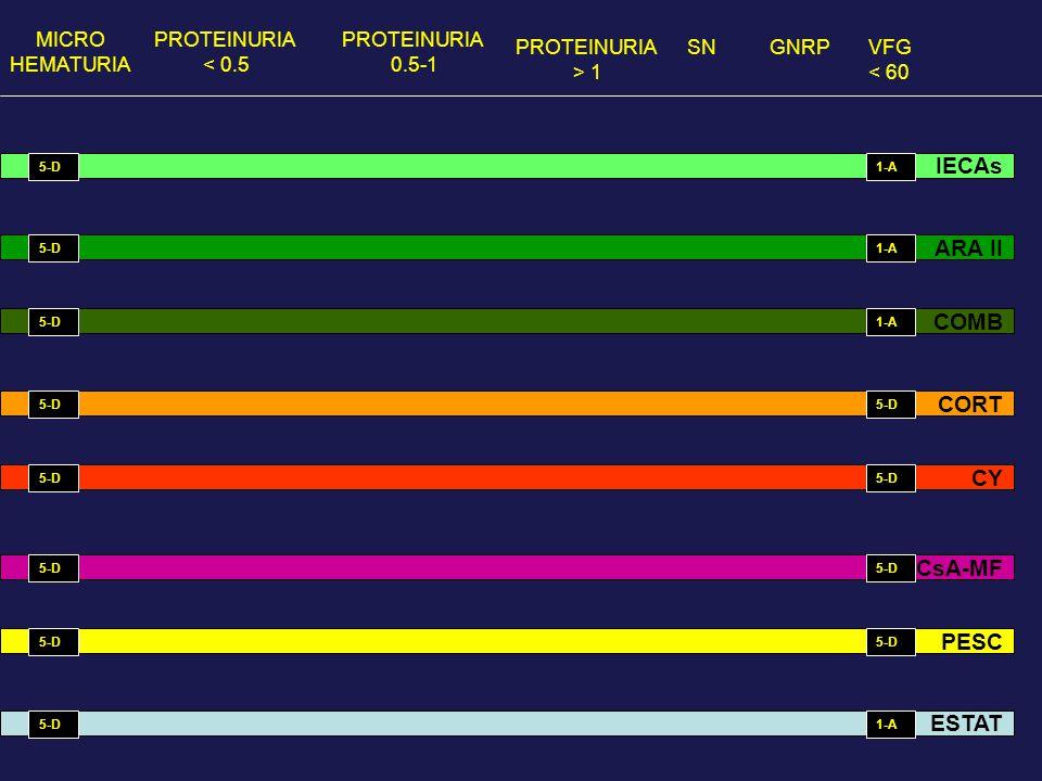 MICRO HEMATURIA PROTEINURIA < 0.5 PROTEINURIA 0.5-1 PROTEINURIA > 1 GNRPVFG < 60 SN IECAs ARA II COMB CORT CsA-MF CY PESC ESTAT 5-D 1-A 5-D 1-A