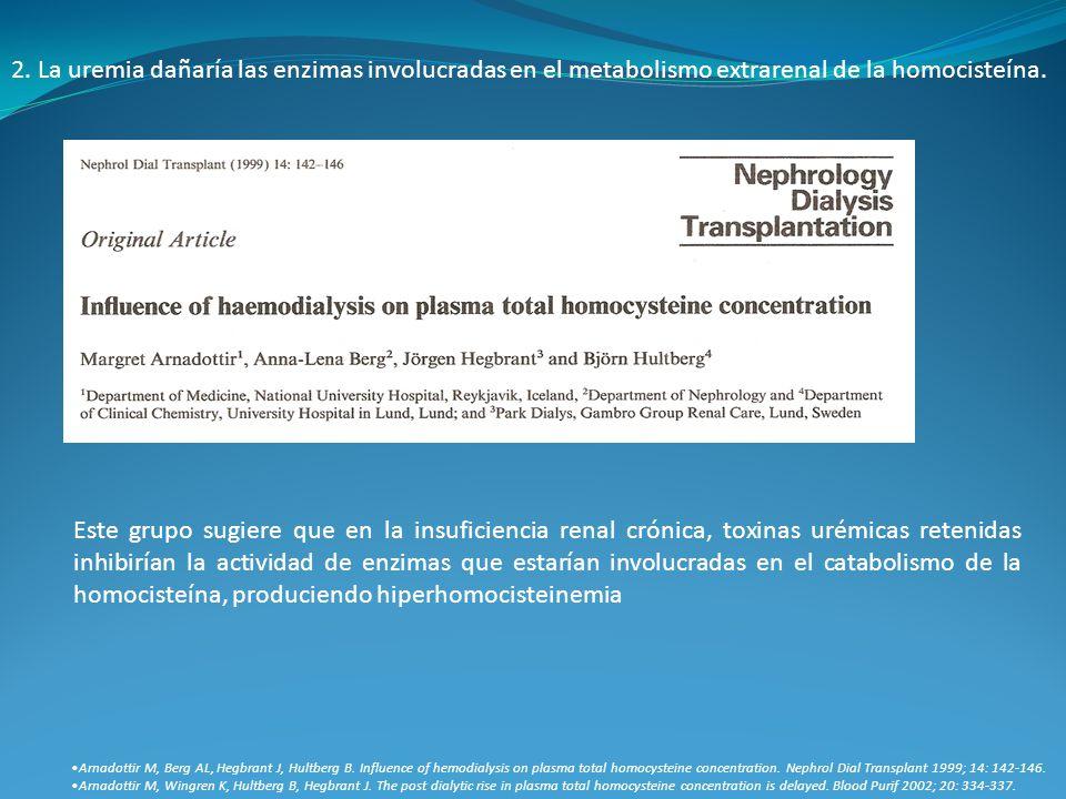 2. La uremia dañaría las enzimas involucradas en el metabolismo extrarenal de la homocisteína. Arnadottir M, Berg AL, Hegbrant J, Hultberg B. Influenc