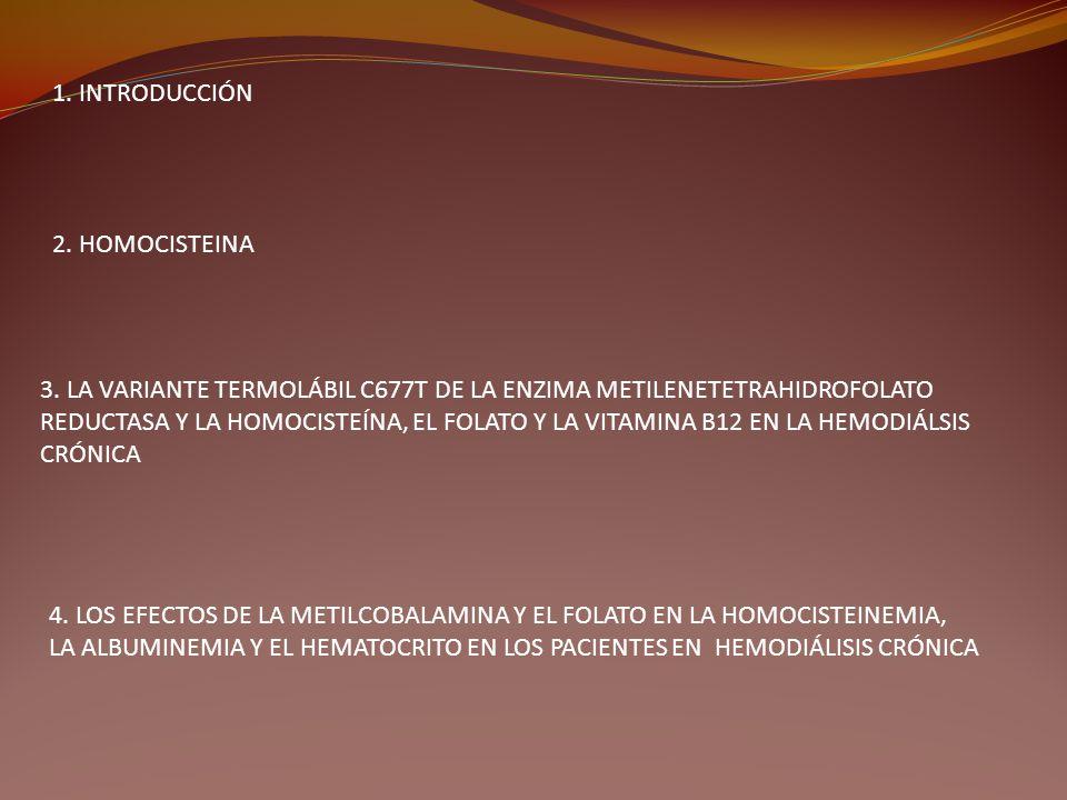 1. INTRODUCCIÓN 2. HOMOCISTEINA 3. LA VARIANTE TERMOLÁBIL C677T DE LA ENZIMA METILENETETRAHIDROFOLATO REDUCTASA Y LA HOMOCISTEÍNA, EL FOLATO Y LA VITA
