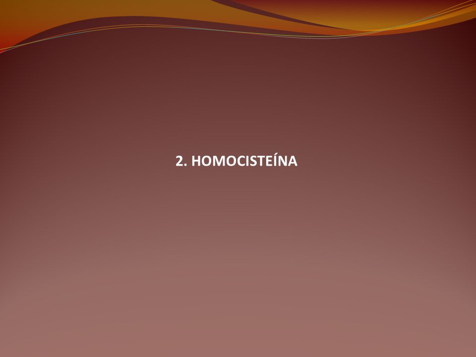 2. HOMOCISTEÍNA
