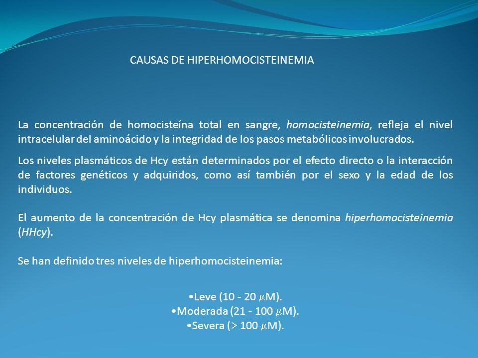 CAUSAS DE HIPERHOMOCISTEINEMIA La concentración de homocisteína total en sangre, homocisteinemia, refleja el nivel intracelular del aminoácido y la in