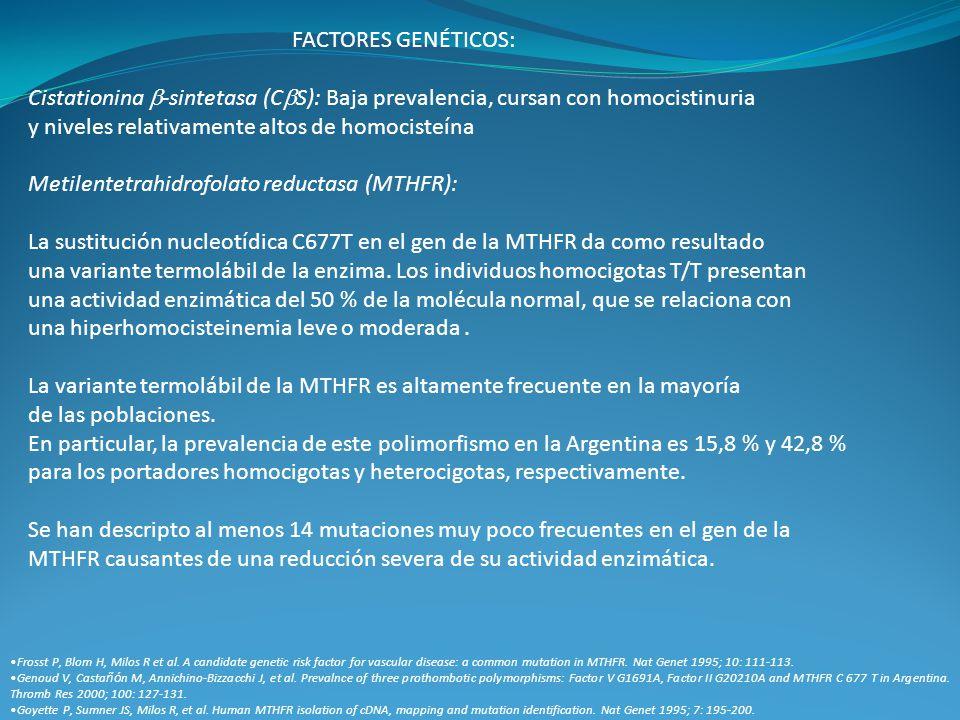 FACTORES GENÉTICOS: Cistationina -sintetasa (C S): Baja prevalencia, cursan con homocistinuria y niveles relativamente altos de homocisteína Metilente