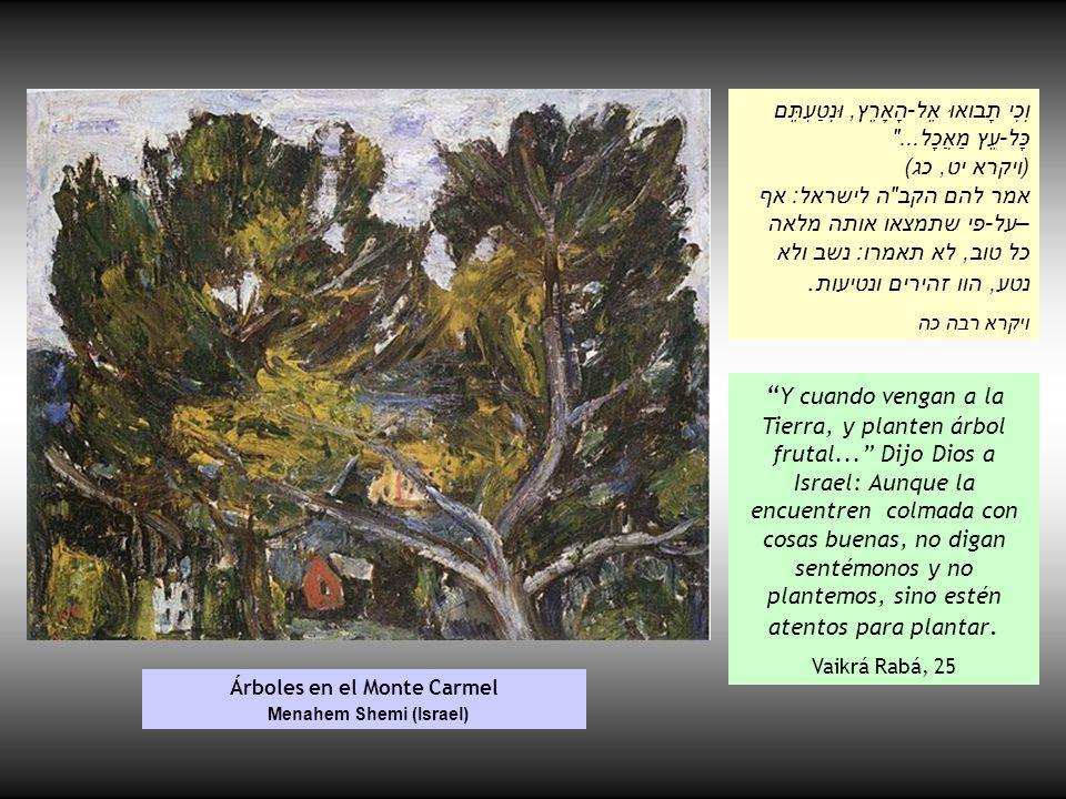 Árboles en el Monte Carmel Menahem Shemi (Israel) וְכִי תָבואוּ אֶל-הָאָרֶץ, וּנְטַעְתֶּם כָּל-עֵץ מַאֲכָל...