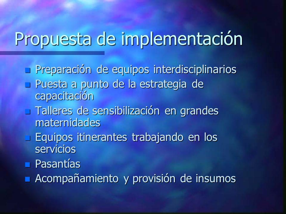 Propuesta de implementación n Preparación de equipos interdisciplinarios n Puesta a punto de la estrategia de capacitación n Talleres de sensibilizaci