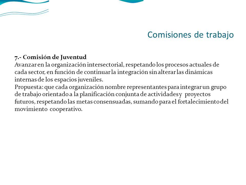 7.- Comisión de Juventud Avanzar en la organización intersectorial, respetando los procesos actuales de cada sector, en función de continuar la integración sin alterar las dinámicas internas de los espacios juveniles.