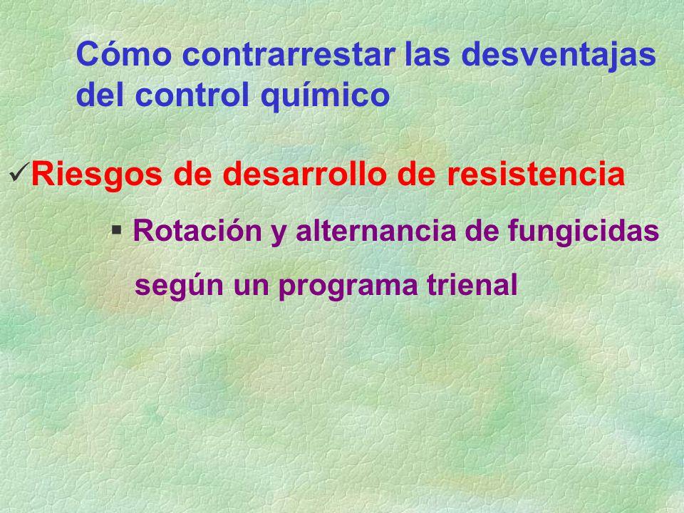 Cómo contrarrestar las desventajas del control químico Riesgos de desarrollo de resistencia Rotación y alternancia de fungicidas según un programa tri