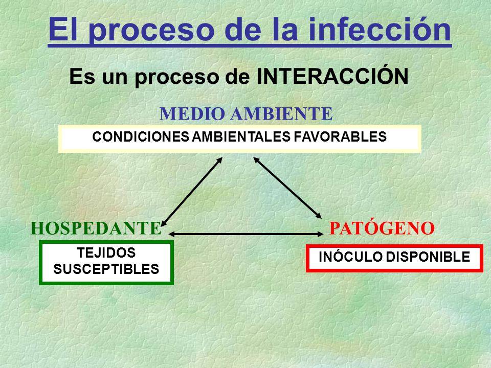 El proceso de la infección Es un proceso de INTERACCIÓN MEDIO AMBIENTE HOSPEDANTE PATÓGENO TEJIDOS SUSCEPTIBLES INÓCULO DISPONIBLE CONDICIONES AMBIENT
