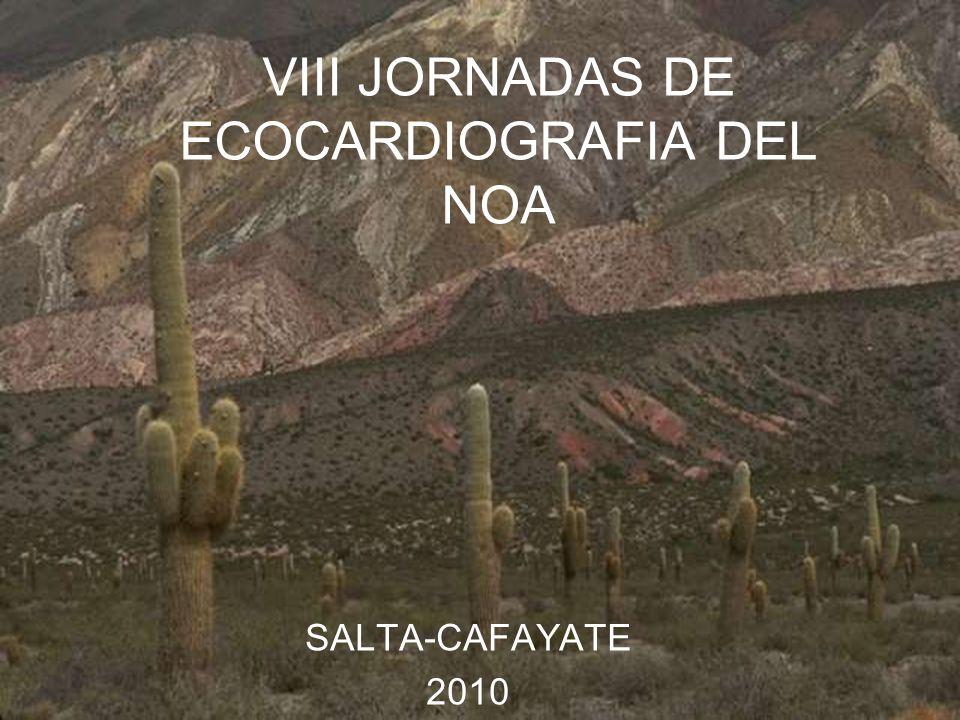 VIII JORNADAS DE ECOCARDIOGRAFIA DEL NOA SALTA-CAFAYATE 2010