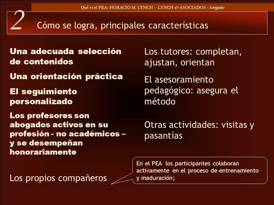Qué es el PEA- HORACIO M. LYNCH - LYNCH & ASOCIADOS - Abogados Una adecuada selección de contenidos Una orientación práctica El seguimiento personaliz