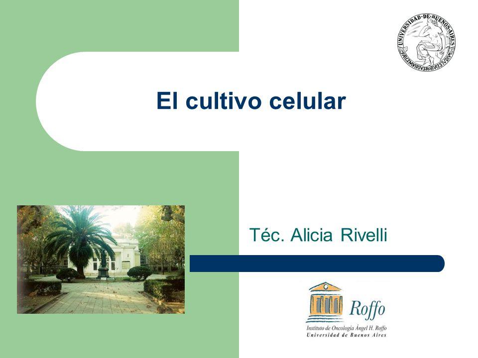 El cultivo celular Téc. Alicia Rivelli