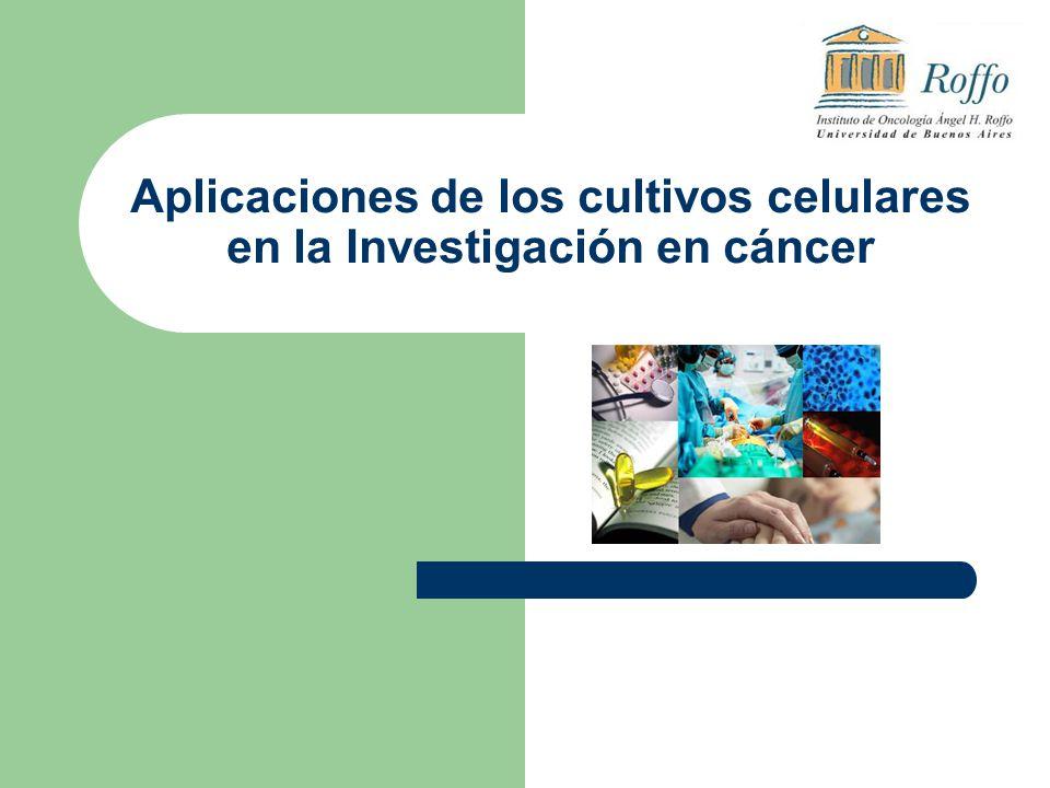 Aplicaciones de los cultivos celulares en la Investigación en cáncer