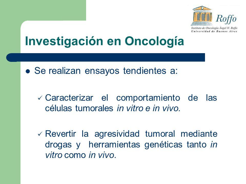 Investigación en Oncología Se realizan ensayos tendientes a: Caracterizar el comportamiento de las células tumorales in vitro e in vivo. Revertir la a