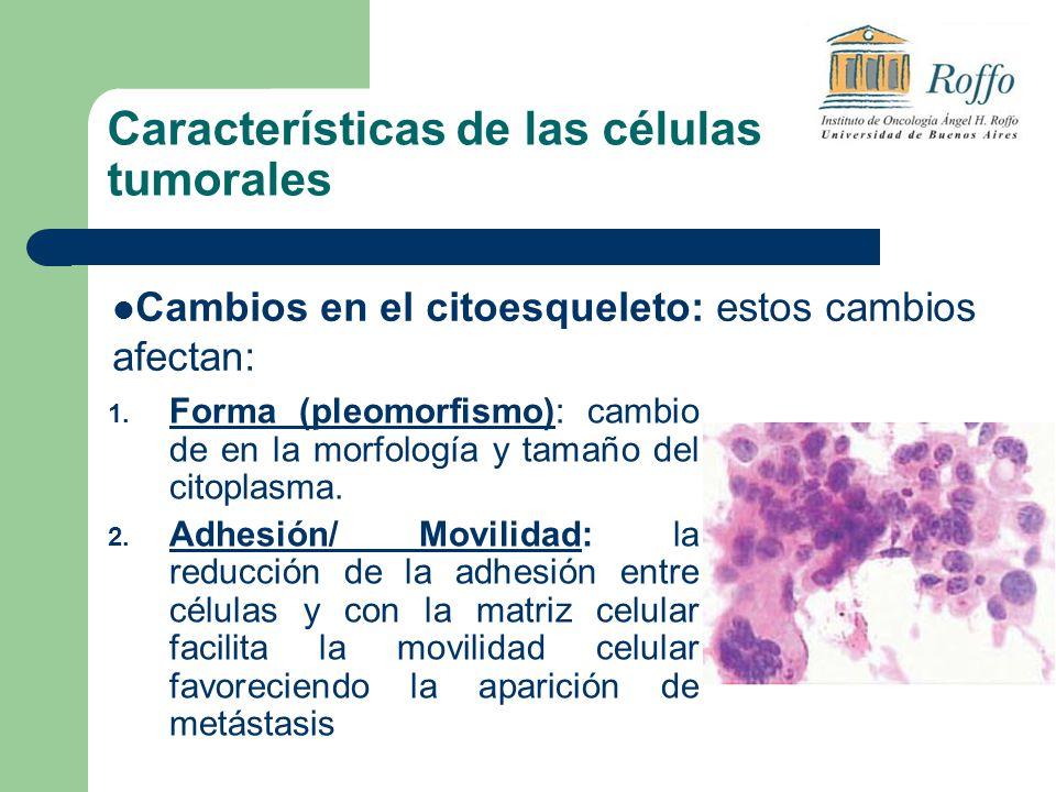 Características de las células tumorales 1.
