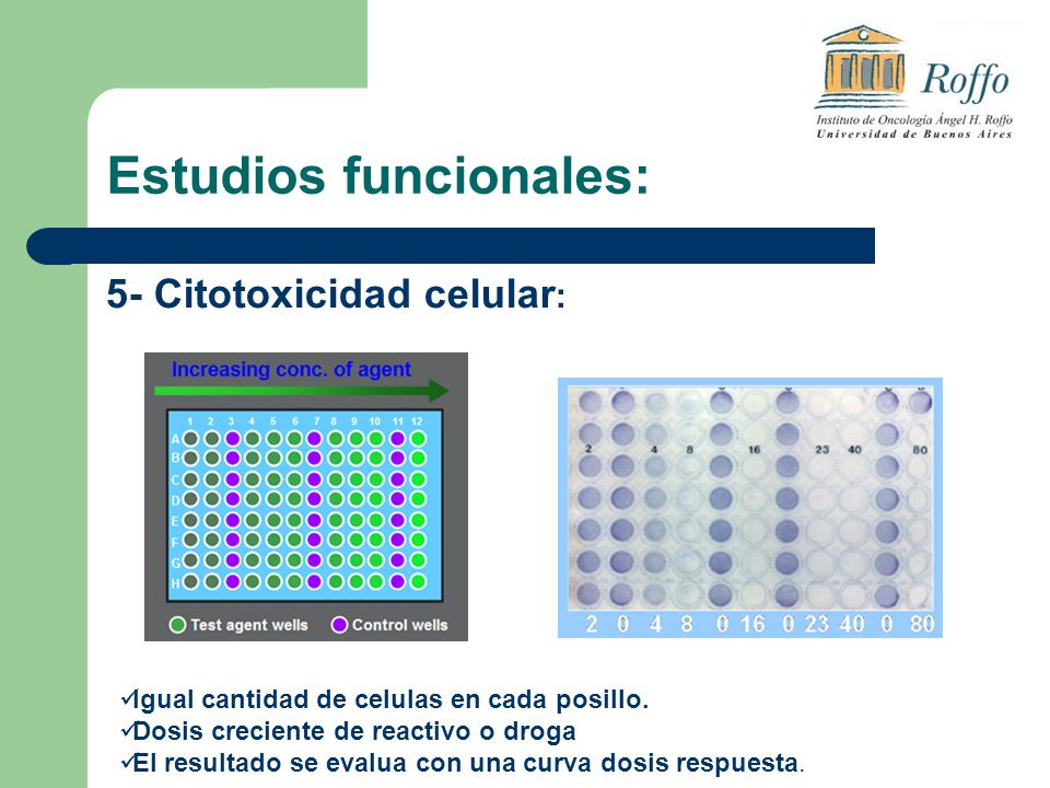 Estudios funcionales: 5- Citotoxicidad celular : Igual cantidad de celulas en cada posillo. Dosis creciente de reactivo o droga El resultado se evalua