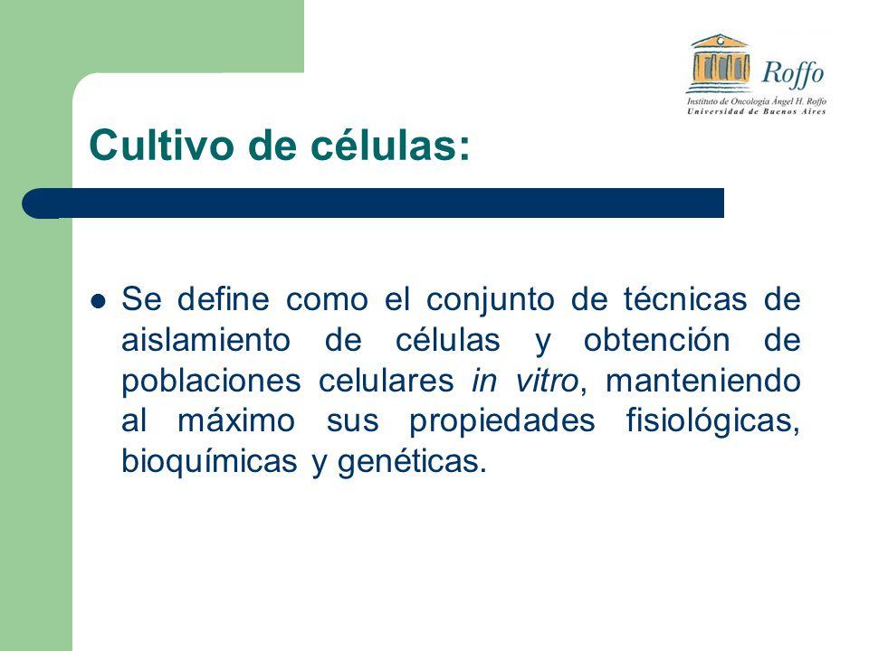 Cultivo de células: Se define como el conjunto de técnicas de aislamiento de células y obtención de poblaciones celulares in vitro, manteniendo al máximo sus propiedades fisiológicas, bioquímicas y genéticas.
