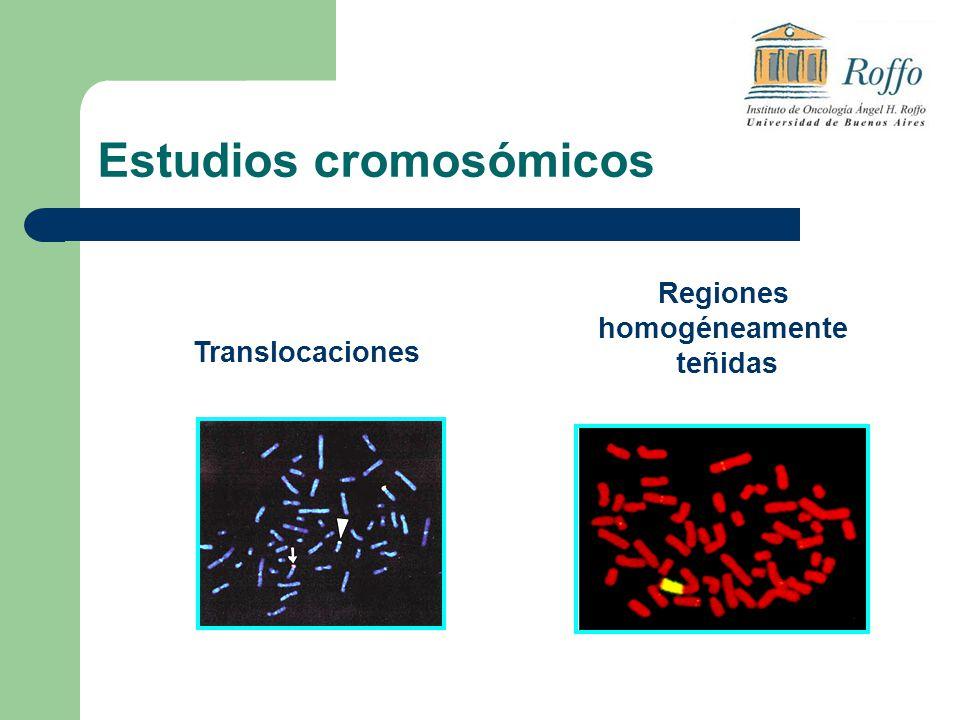 Regiones homogéneamente teñidas Translocaciones Estudios cromosómicos