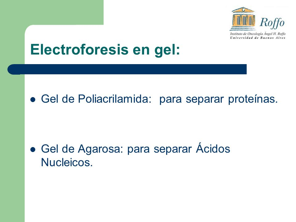 Electroforesis en gel: Gel de Poliacrilamida: para separar proteínas. Gel de Agarosa: para separar Ácidos Nucleicos.