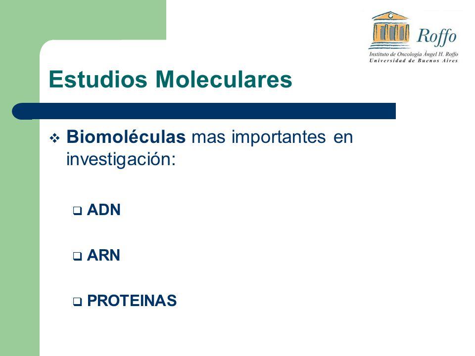 Estudios Moleculares Biomoléculas mas importantes en investigación: ADN ARN PROTEINAS