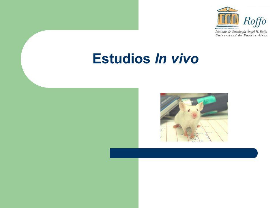 Estudios In vivo