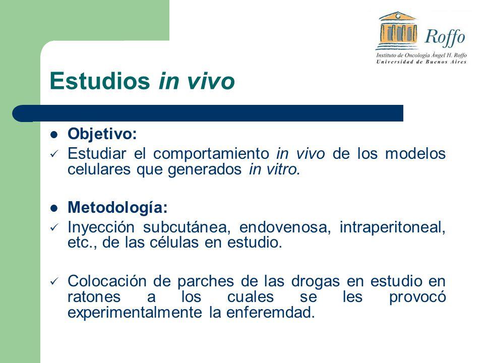 Estudios in vivo Objetivo: Estudiar el comportamiento in vivo de los modelos celulares que generados in vitro.