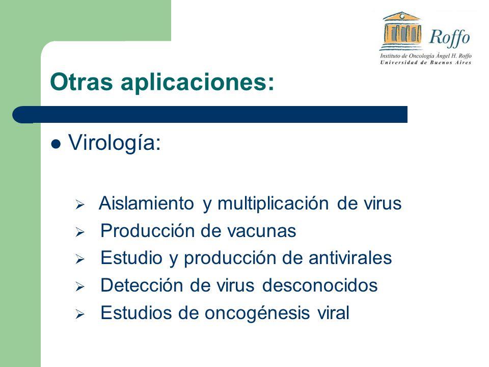 Otras aplicaciones: Virología: Aislamiento y multiplicación de virus Producción de vacunas Estudio y producción de antivirales Detección de virus desconocidos Estudios de oncogénesis viral