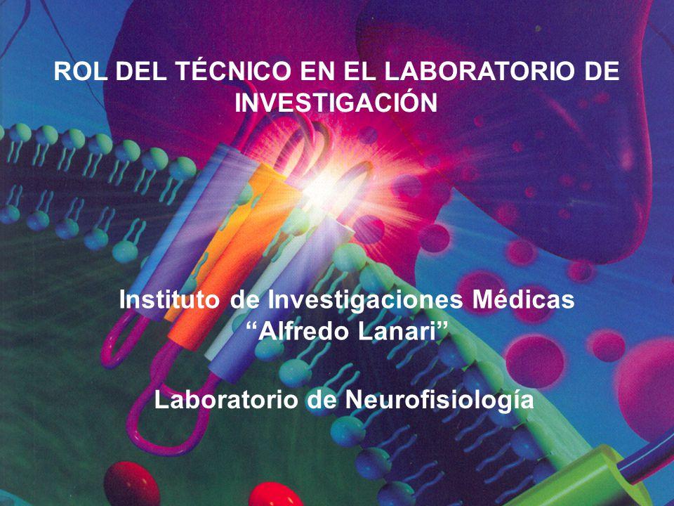 ROL DEL TÉCNICO EN EL LABORATORIO DE INVESTIGACIÓN Instituto de Investigaciones Médicas Alfredo Lanari Laboratorio de Neurofisiología