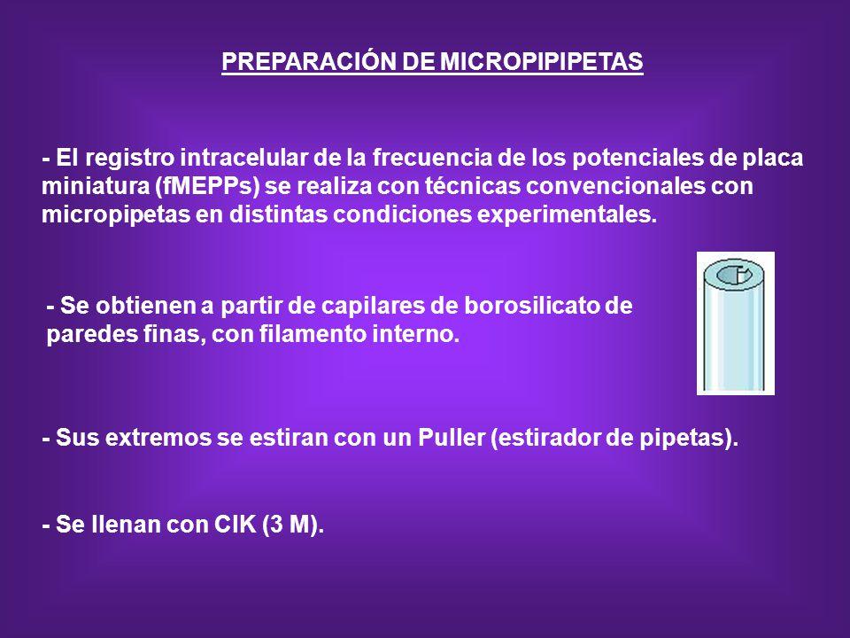 PREPARACIÓN DE MICROPIPIPETAS - Se obtienen a partir de capilares de borosilicato de paredes finas, con filamento interno. - Sus extremos se estiran c