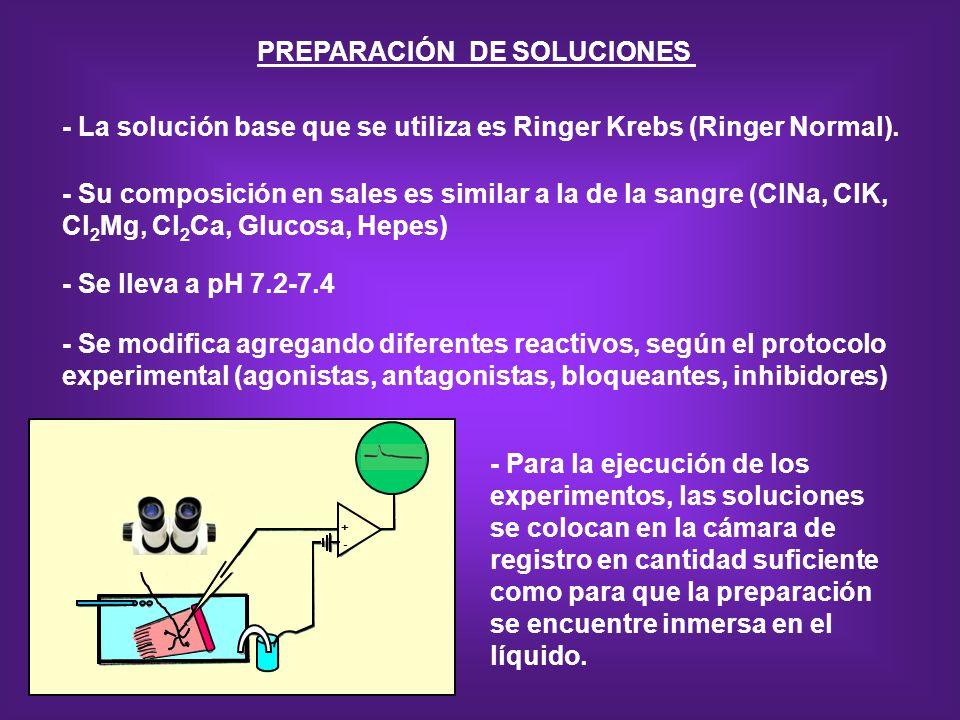 PREPARACIÓN DE SOLUCIONES - La solución base que se utiliza es Ringer Krebs (Ringer Normal). - Su composición en sales es similar a la de la sangre (C
