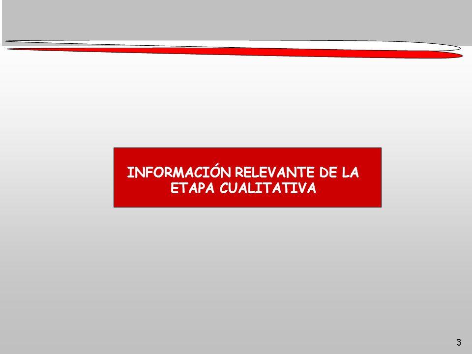 3 INFORMACIÓN RELEVANTE DE LA ETAPA CUALITATIVA