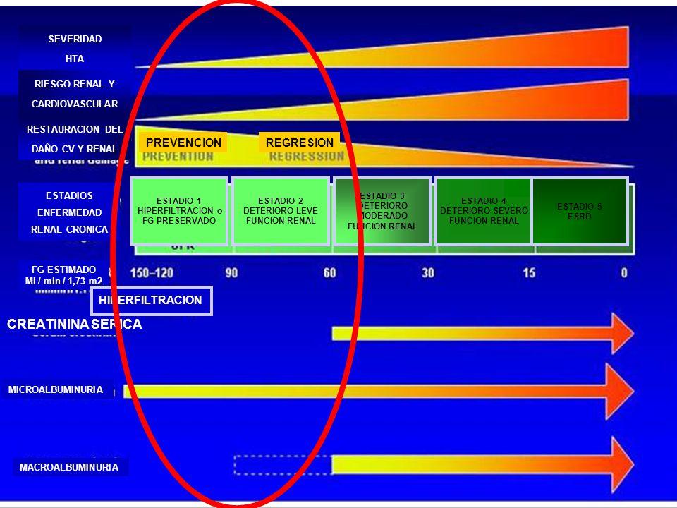 CREATININA SERICA MICROALBUMINURIA MACROALBUMINURIA MICROALBUMINURIA FG ESTIMADO Ml / min / 1,73 m2 HIPERFILTRACION ESTADIOS ENFERMEDAD RENAL CRONICA