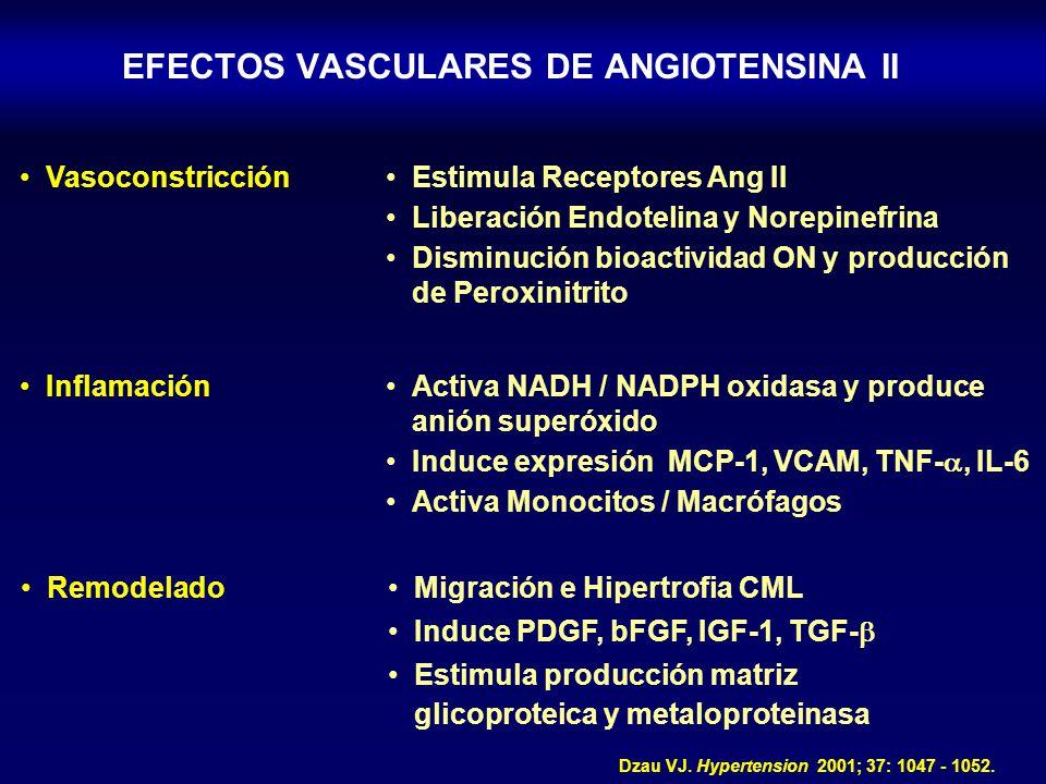 Dzau VJ. Hypertension 2001; 37: 1047 - 1052. EFECTOS VASCULARES DE ANGIOTENSINA II VasoconstricciónEstimula Receptores Ang II Liberación Endotelina y