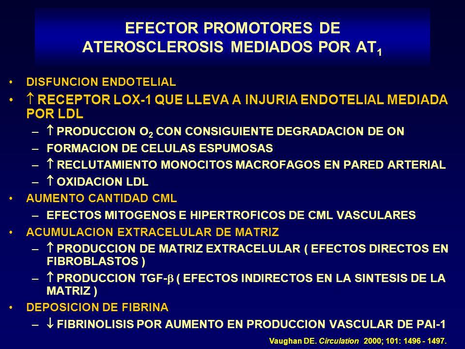 EFECTOR PROMOTORES DE ATEROSCLEROSIS MEDIADOS POR AT 1 DISFUNCION ENDOTELIAL RECEPTOR LOX-1 QUE LLEVA A INJURIA ENDOTELIAL MEDIADA POR LDL – PRODUCCIO