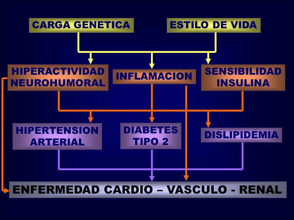 CARGA GENETICAESTILO DE VIDA HIPERACTIVIDAD NEUROHUMORAL INFLAMACION SENSIBILIDAD INSULINA HIPERTENSION ARTERIAL DIABETES TIPO 2 DISLIPIDEMIA ENFERMED