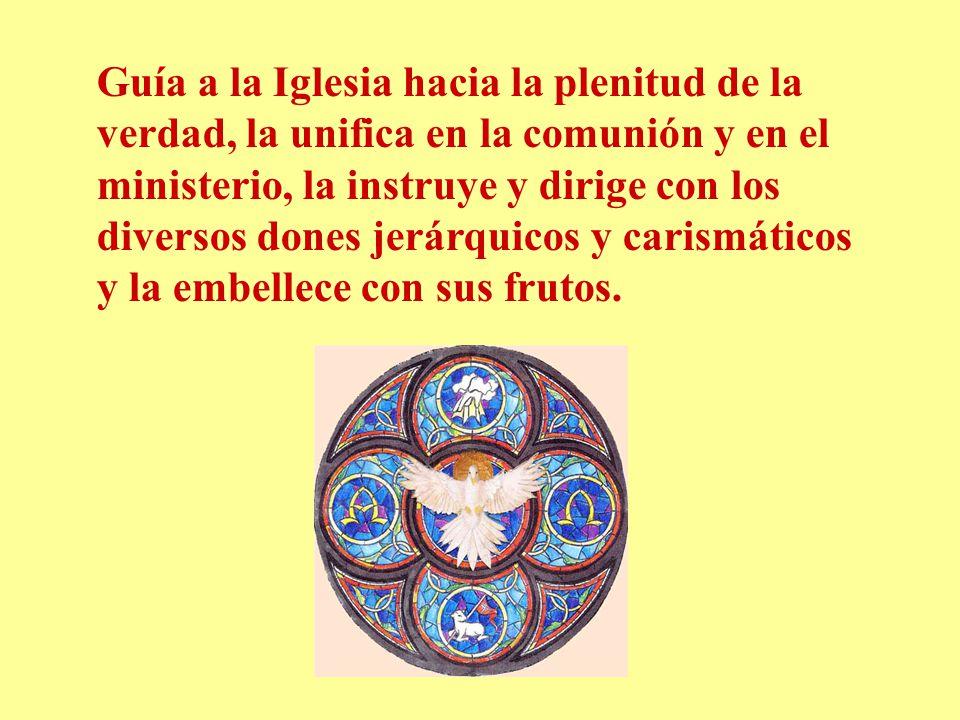 Guía a la Iglesia hacia la plenitud de la verdad, la unifica en la comunión y en el ministerio, la instruye y dirige con los diversos dones jerárquico