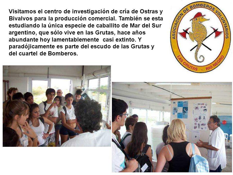 Visitamos 2 escuelas secundarias a chicos de 4 y 5 año que ya han trabajado con la Fundación Inalfquen en la tarea de conservación del playero rojizo.