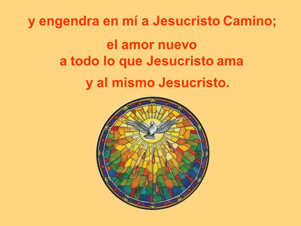 y engendra en mí a Jesucristo Camino; el amor nuevo a todo lo que Jesucristo ama y al mismo Jesucristo.