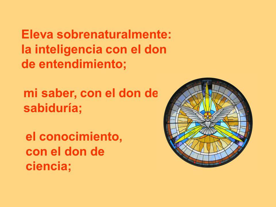 Eleva sobrenaturalmente: la inteligencia con el don de entendimiento; mi saber, con el don de sabiduría; el conocimiento, con el don de ciencia;