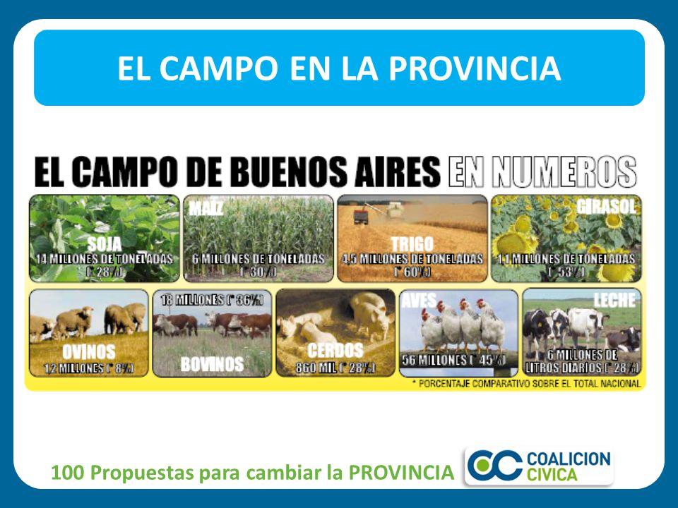 EL CAMPO EN LA PROVINCIA 100 Propuestas para cambiar la PROVINCIA