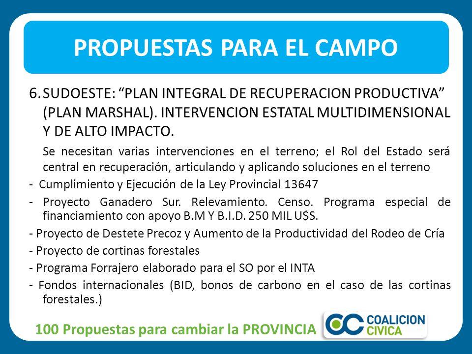 6. SUDOESTE: PLAN INTEGRAL DE RECUPERACION PRODUCTIVA (PLAN MARSHAL).