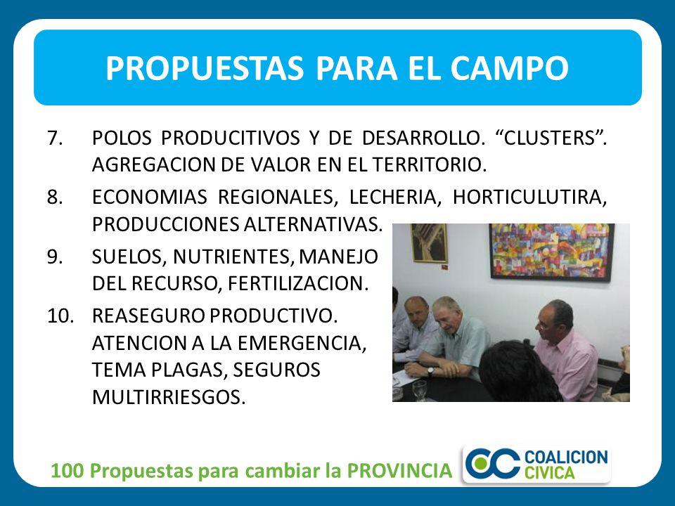 7.POLOS PRODUCITIVOS Y DE DESARROLLO. CLUSTERS. AGREGACION DE VALOR EN EL TERRITORIO.