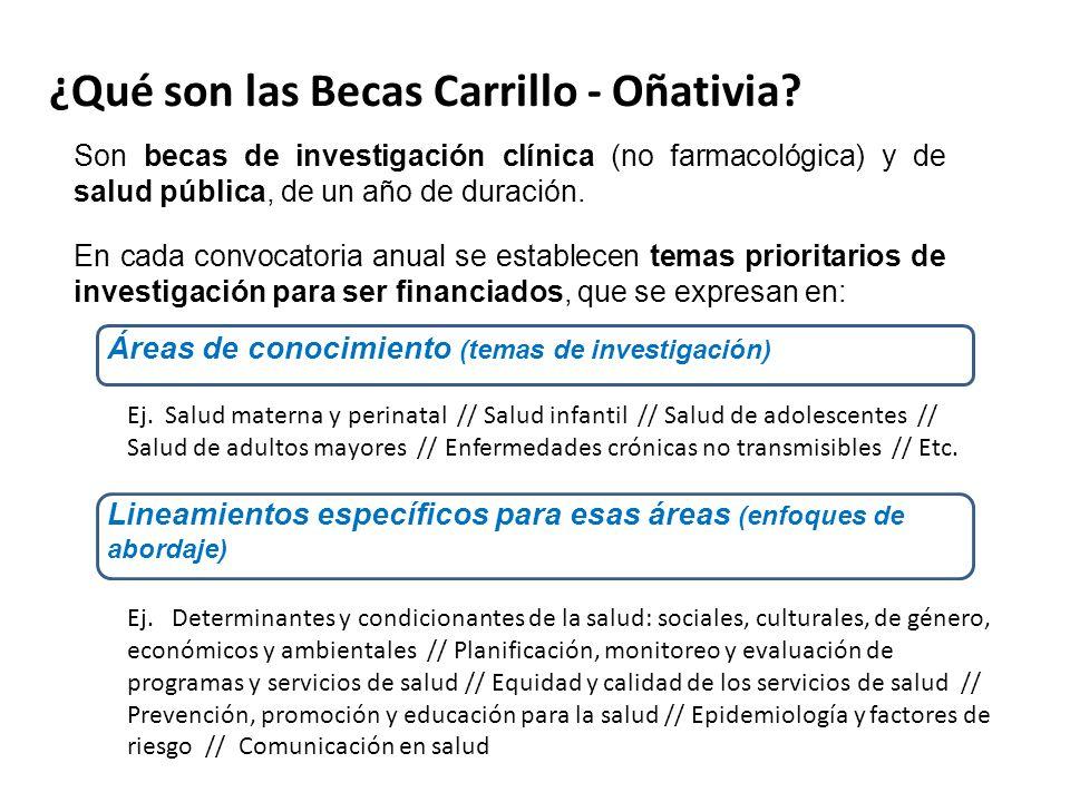 ¿Qué son las Becas Carrillo - Oñativia.
