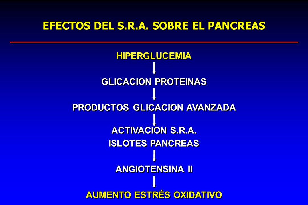 EFECTOS DEL S.R.A. SOBRE EL PANCREAS HIPERGLUCEMIA GLICACION PROTEINAS PRODUCTOS GLICACION AVANZADA ACTIVACION S.R.A. ISLOTES PANCREAS ACTIVACION S.R.