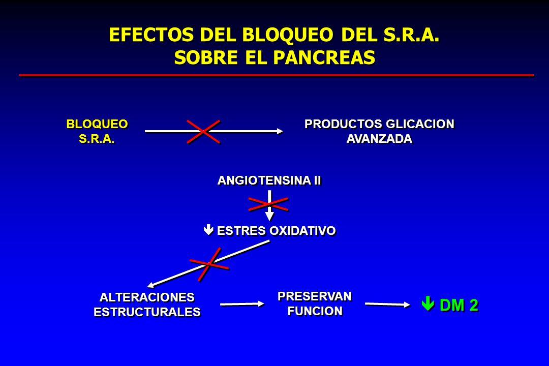 EFECTOS DEL BLOQUEO DEL S.R.A. SOBRE EL PANCREAS BLOQUEO S.R.A. PRODUCTOS GLICACION AVANZADA ANGIOTENSINA II ESTRES OXIDATIVO ALTERACIONES ESTRUCTURAL