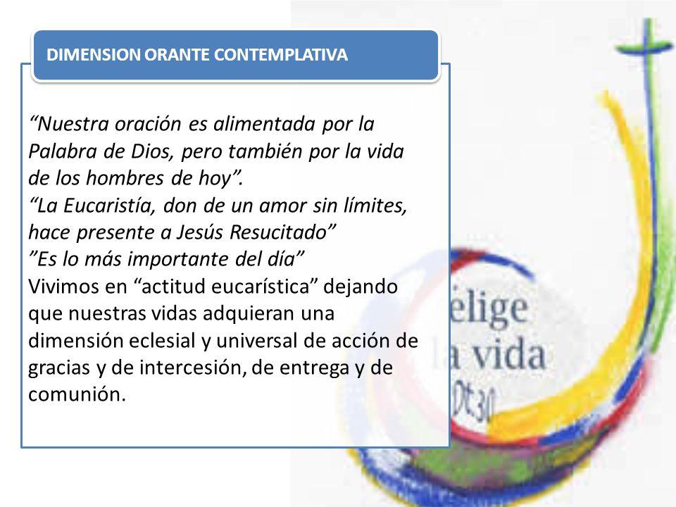 EL ESPÍRITU DE FAMILIA La comunión en el mismo espíritu y la misma llamada de seguir a Jesús y servir a los pobres, nos da cohesión y fuerza.
