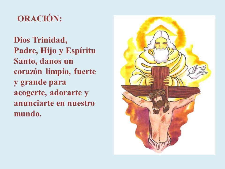La Trinidad es un solo Dios el que se nos revela como fuente de vida, como modelo de misericordia, como manantial del amor.
