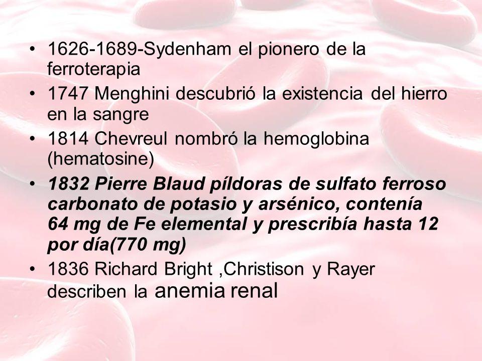 1626-1689-Sydenham el pionero de la ferroterapia 1747 Menghini descubrió la existencia del hierro en la sangre 1814 Chevreul nombró la hemoglobina (hematosine) 1832 Pierre Blaud píldoras de sulfato ferroso carbonato de potasio y arsénico, contenía 64 mg de Fe elemental y prescribía hasta 12 por día(770 mg) 1836 Richard Bright,Christison y Rayer describen la anemia renal
