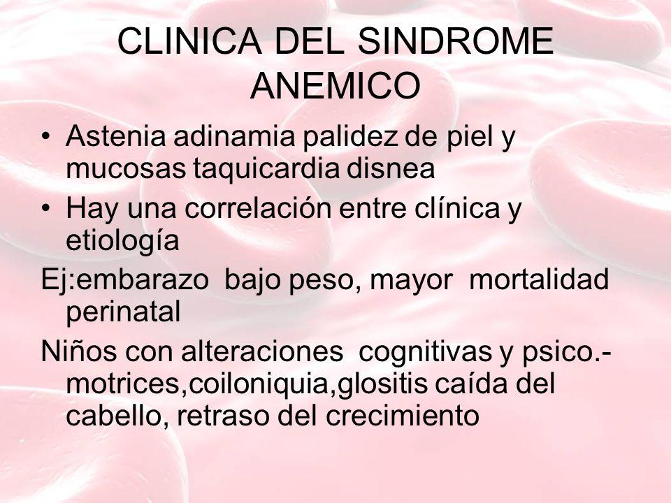 CLINICA DEL SINDROME ANEMICO Astenia adinamia palidez de piel y mucosas taquicardia disnea Hay una correlación entre clínica y etiología Ej:embarazo b