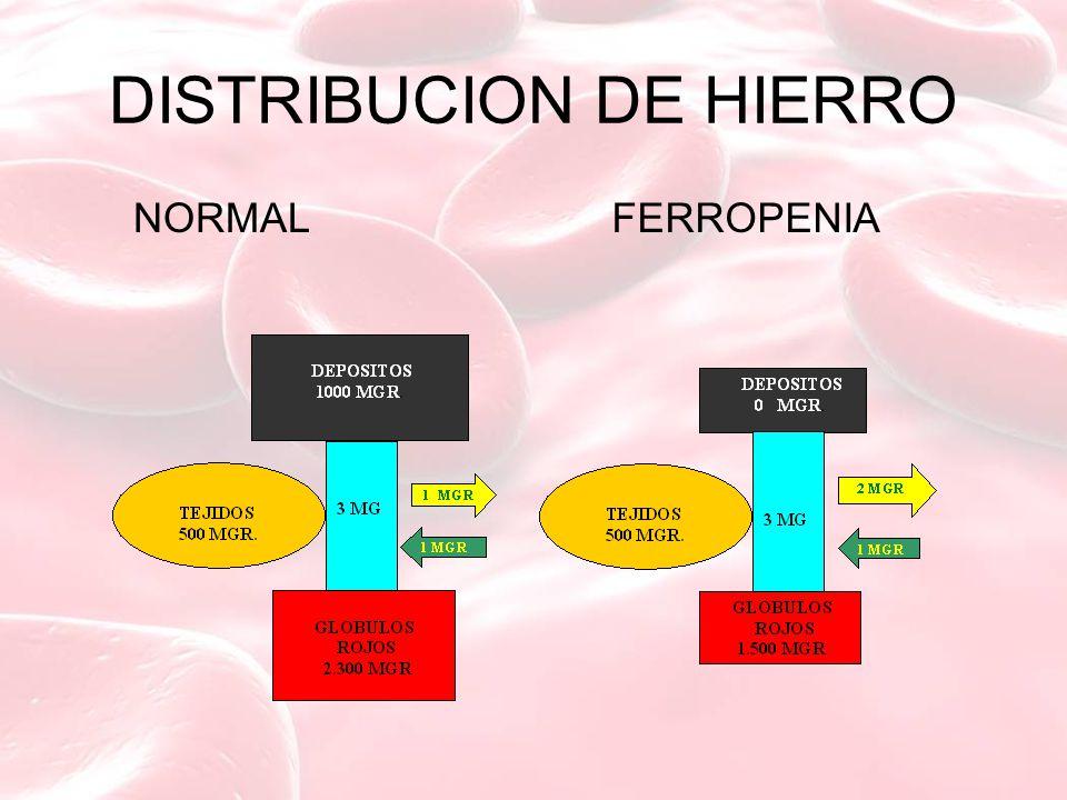 DISTRIBUCION DE HIERRO NORMAL FERROPENIA